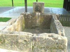 Augst forum fountain